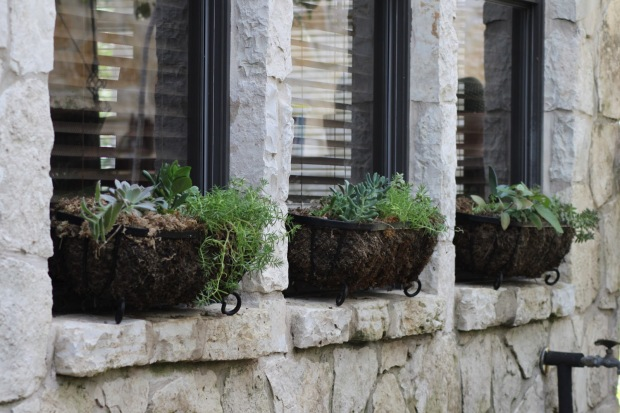 3 window boxes