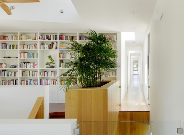 houseplants-planter-hallway